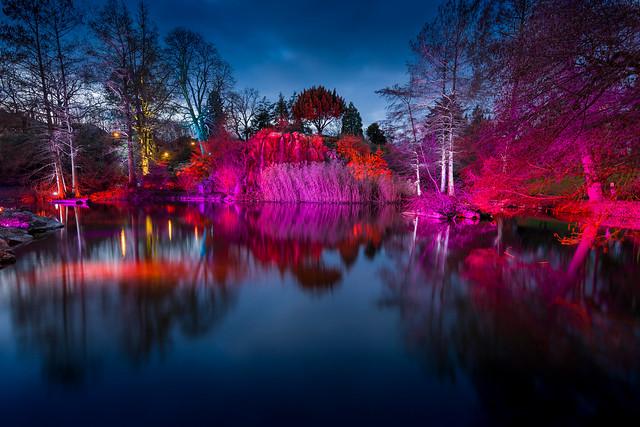 Winterlichter Palmengarten NZ7_1402