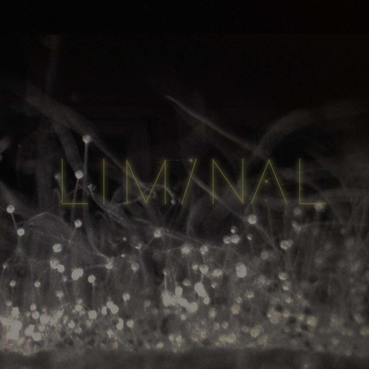 Liminal - Liminal 2