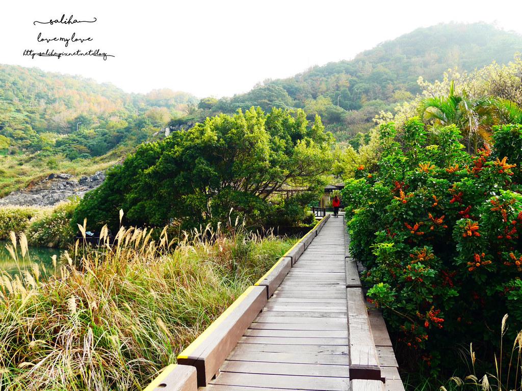 台北陽明山北投行義路ig打卡拍照必玩必拍一日遊景點推薦硫磺谷 (7)