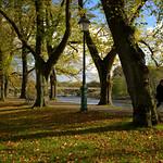Autumn shadows at Avenham Park, Preston
