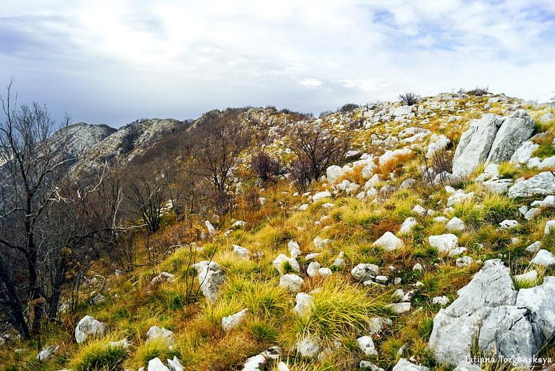Вид на горный хребет перед вершиной Каменски Кабао