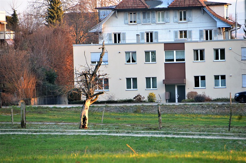 Feldbrunnen village 12.12 (7)