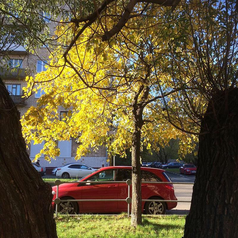 Октябрь в Москве