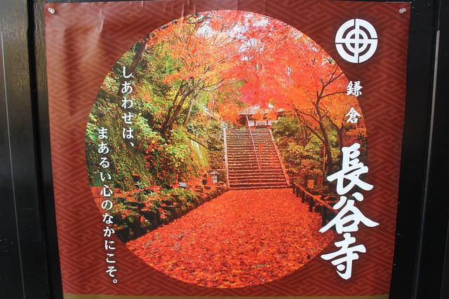 hasederakamakura043