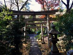 tori gate of a writer kami shrine