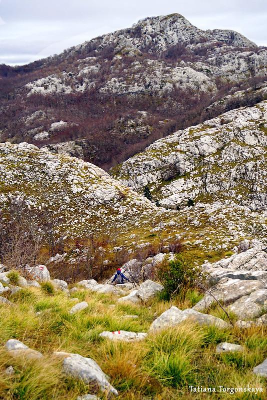 Пейзаж с тропы к перевалу Вратло