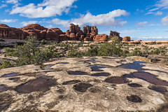 Sandstone Pockets Filled with Rainwater,in the Needles District of Canyonlands National Park