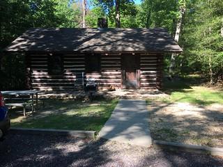 WE Log Cabin Life