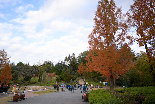 shinrinkouen (2)