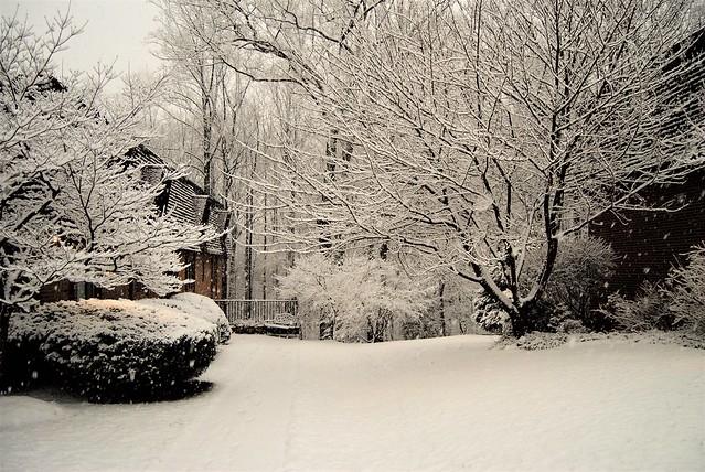snow day c, Nikon D3000, AF-S DX Zoom-Nikkor 18-55mm f/3.5-5.6G ED II