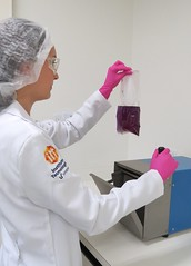 Laboratório de Microbiologia - itt Nutrifor