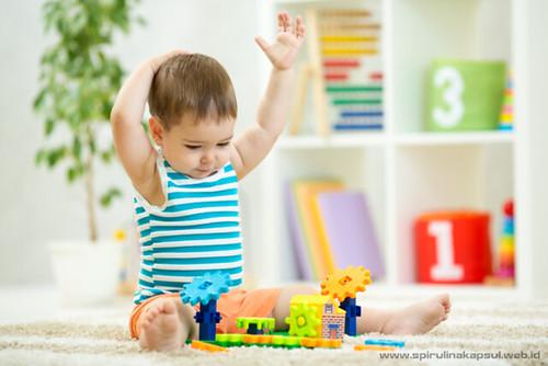 Spirulina untuk Bayi dan Otak