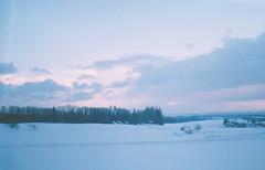 Pale Snow
