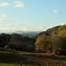 Llynclys Common & beyond