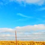 16. Jaanuar 2019 - 15:20 - Blue Sky