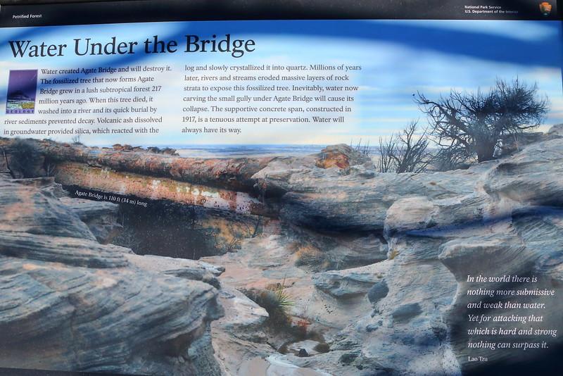 IMG_4559 Agate Bridge
