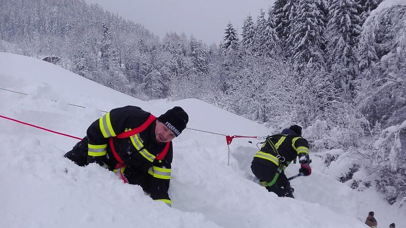 SchneedruckRosenau-5