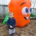 pumpkin-farm_30.10.2014_1402