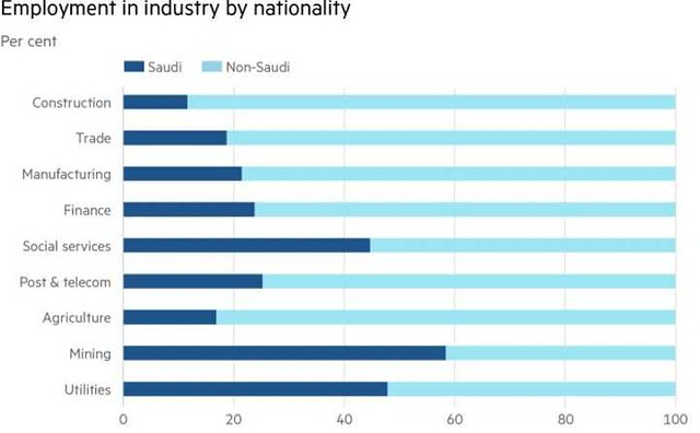4757 Saudi Arabia has terminated 71% of expatriates in the Government sectors 01