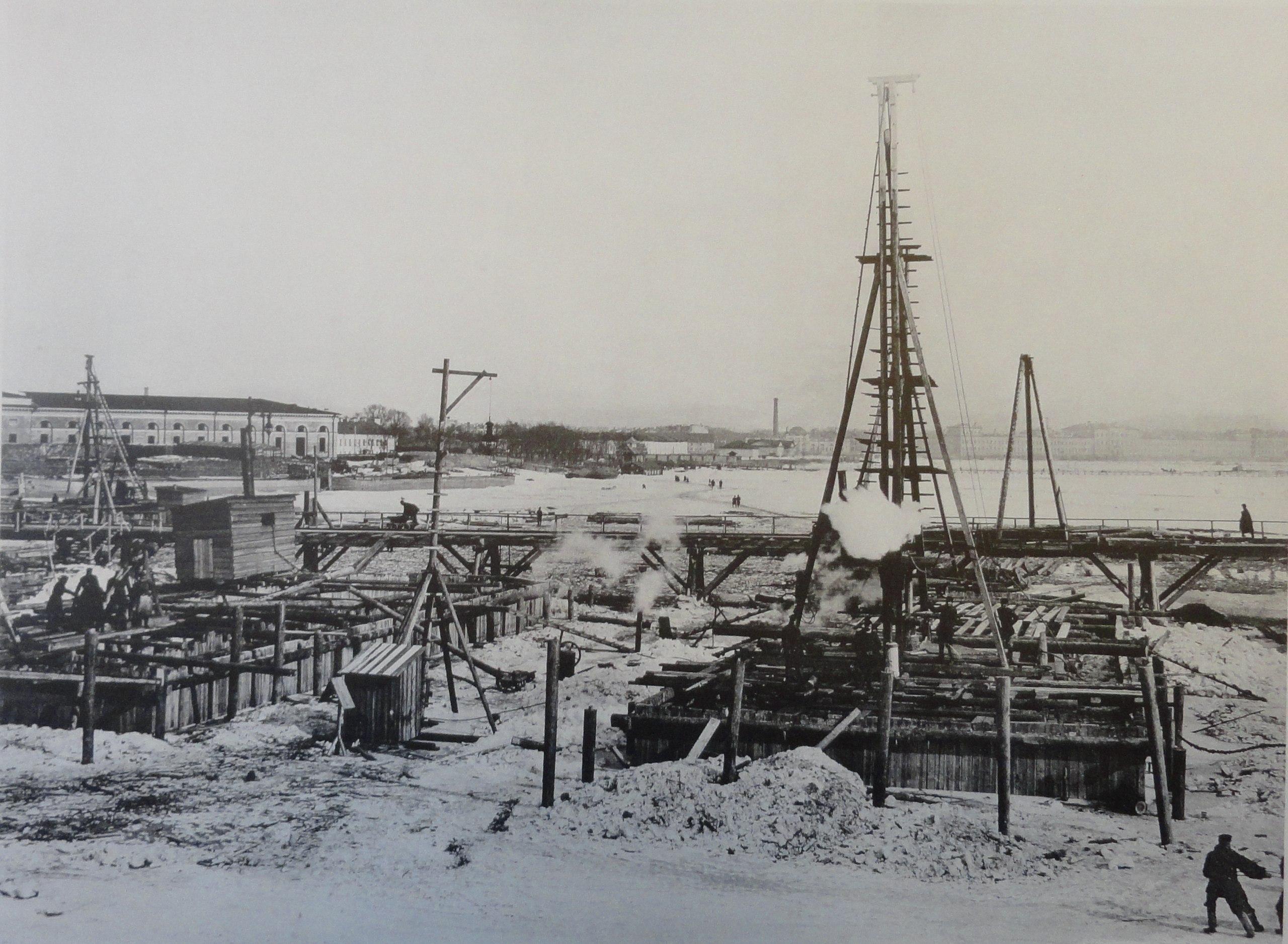 1901. Быки №8 и №9. 1 марта