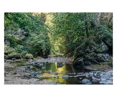 Vallée de la Jordanne - Cantal