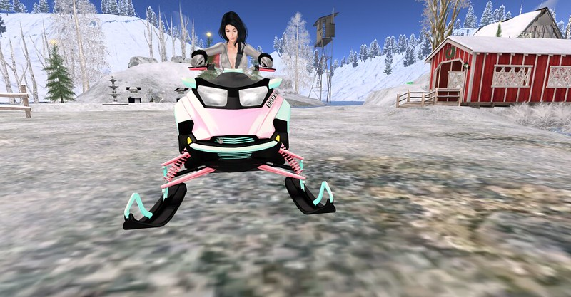 SnowMobile Time