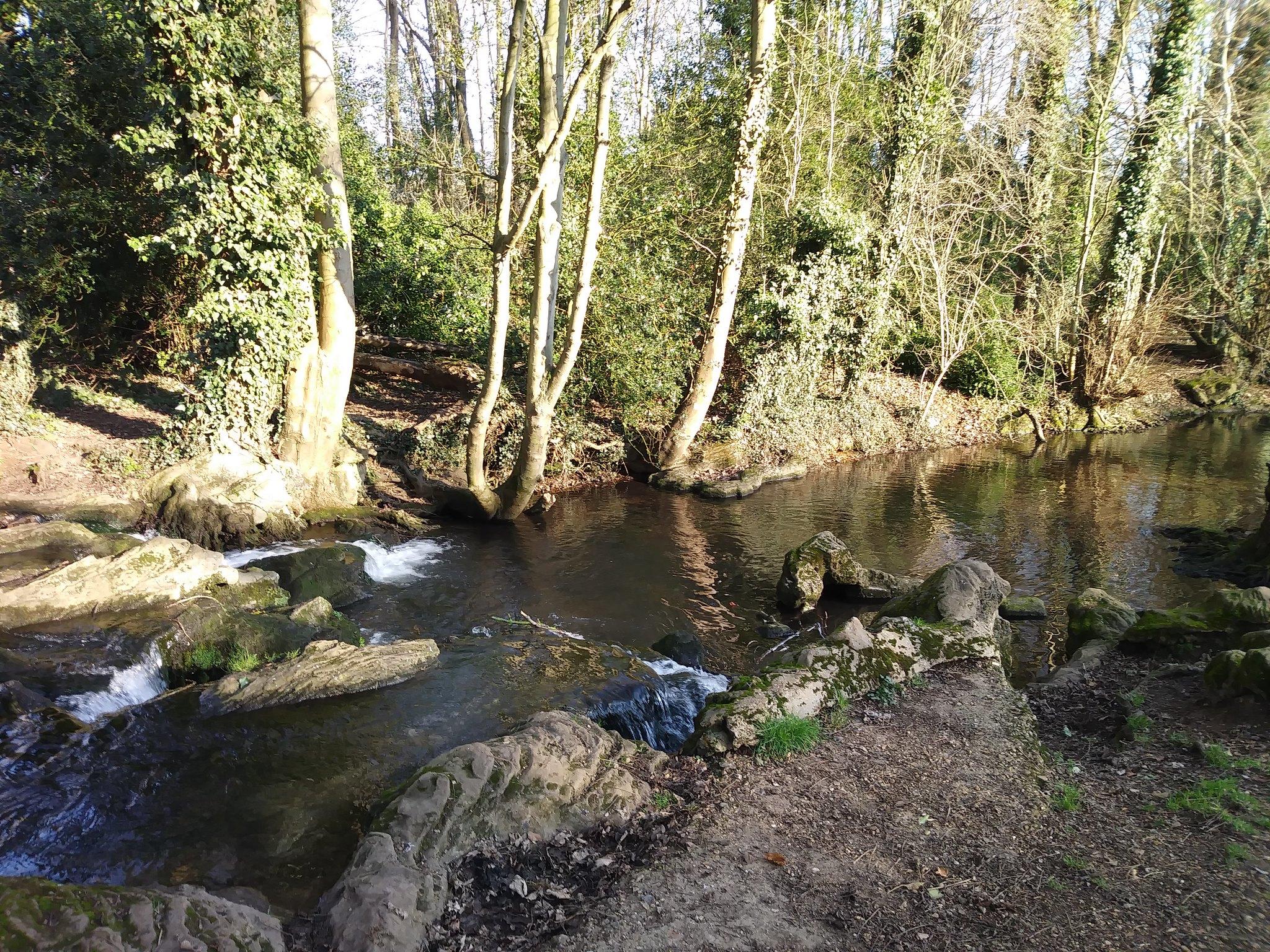 Tewin Water in Winter