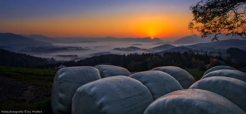 Sonnenaufgang Rechberg