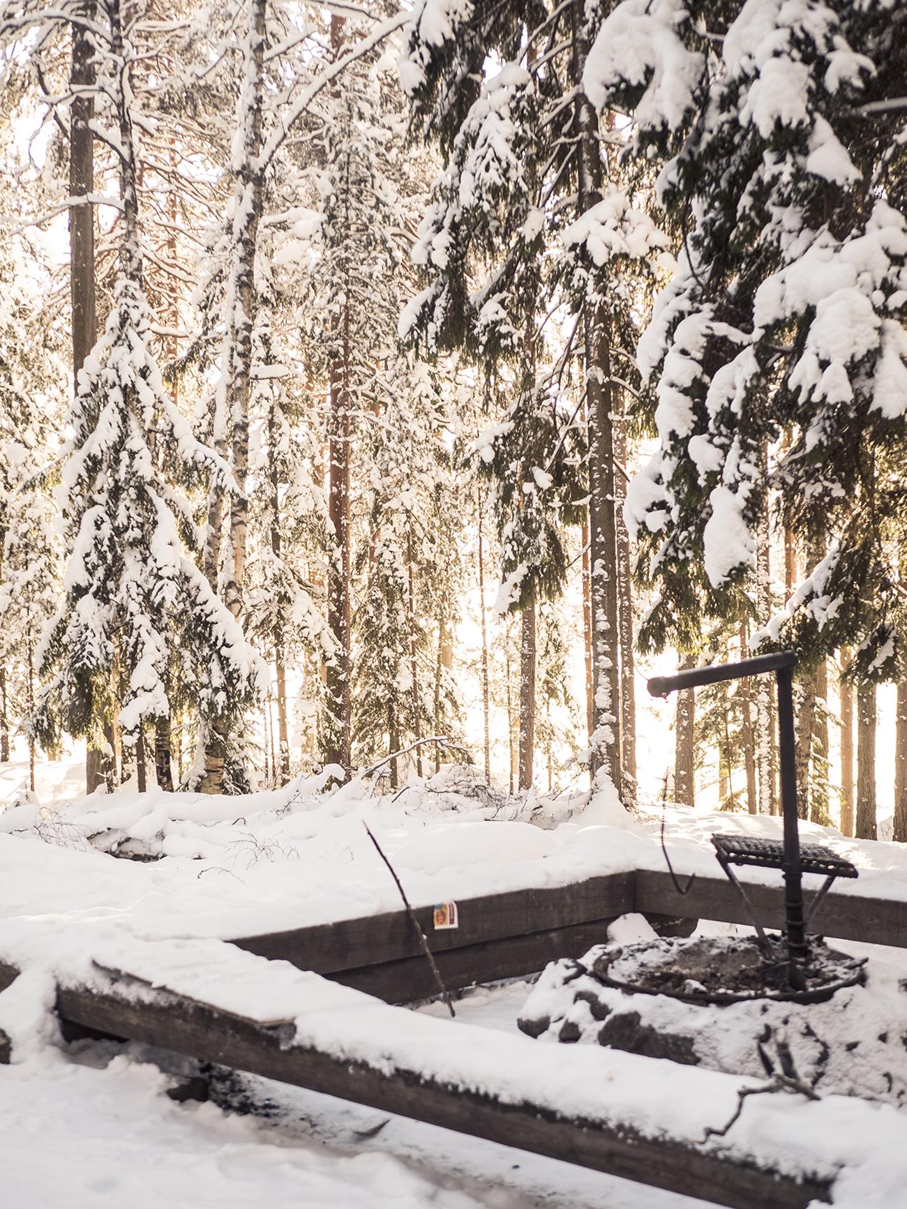 winterwonder6