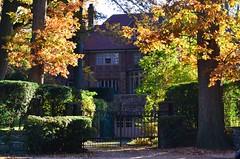Mansion Next To Olivia Park