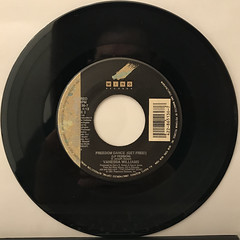VANESSA WILLIAMS:SAVE THE BEST FOR LAST(RECORD SIDE-B)