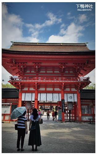 下鴨神社-5
