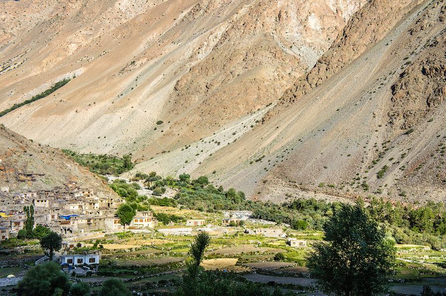 Народ Брокпа, Деревня Ариев, Ладакх