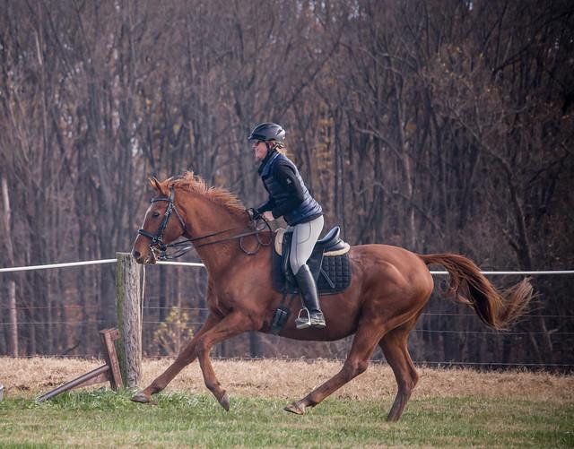 20181116 Austen's Ponies_51