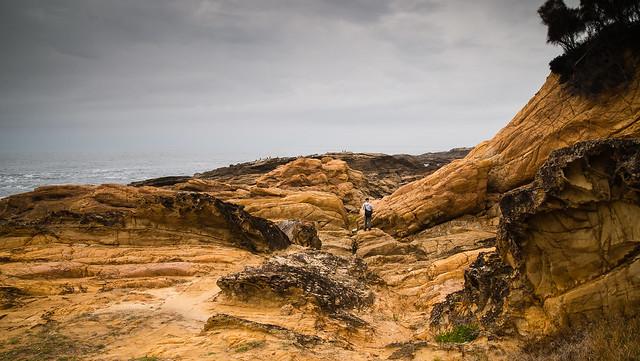 Bermagui Headland, Nikon D610, Tamron SP AF 28-75mm f/2.8 XR Di LD Aspherical (IF) Macro (A09NII)