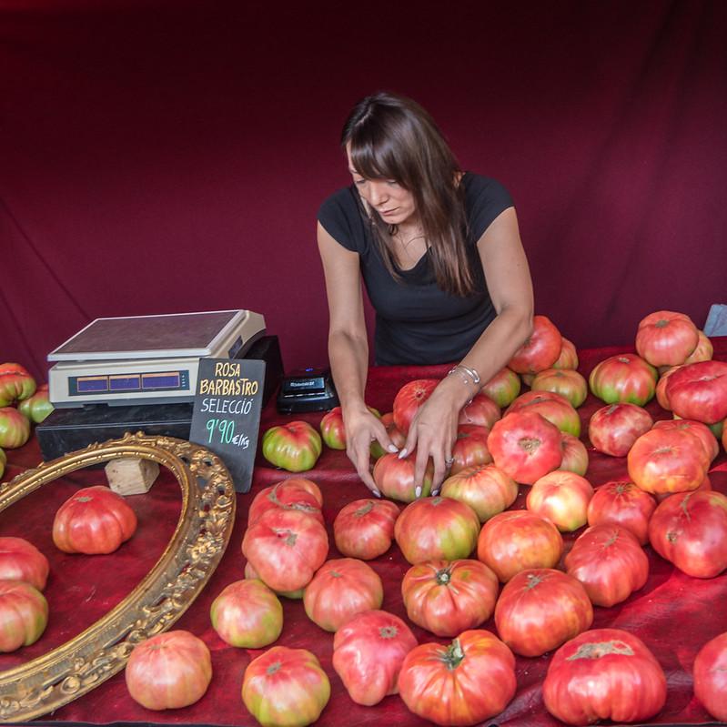 Tomates géantes... recadrage 45658895032_8001173824_c