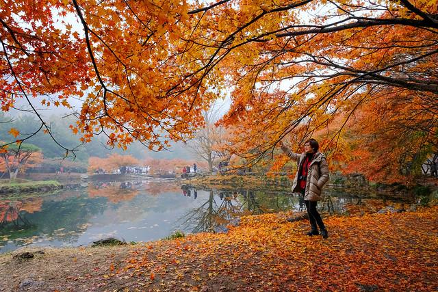 韓國內藏山國立公園 - 白羊寺(백양사), Fujifilm X-E3, XF14mmF2.8 R