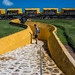 2018 - Mexico - Campeche - Fort San José El Alto - 5 of 5 por Ted's photos - Returns late Feb