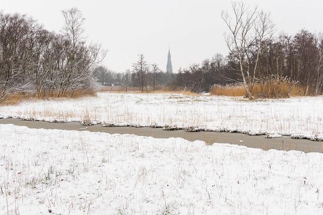 Amsterdamse bos, snowfall., Canon EOS M6, Canon EF-M 22mm f/2 STM