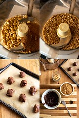 Chocolate Peanut Butter Candy Bites [The Vegan 8 Cookbook]