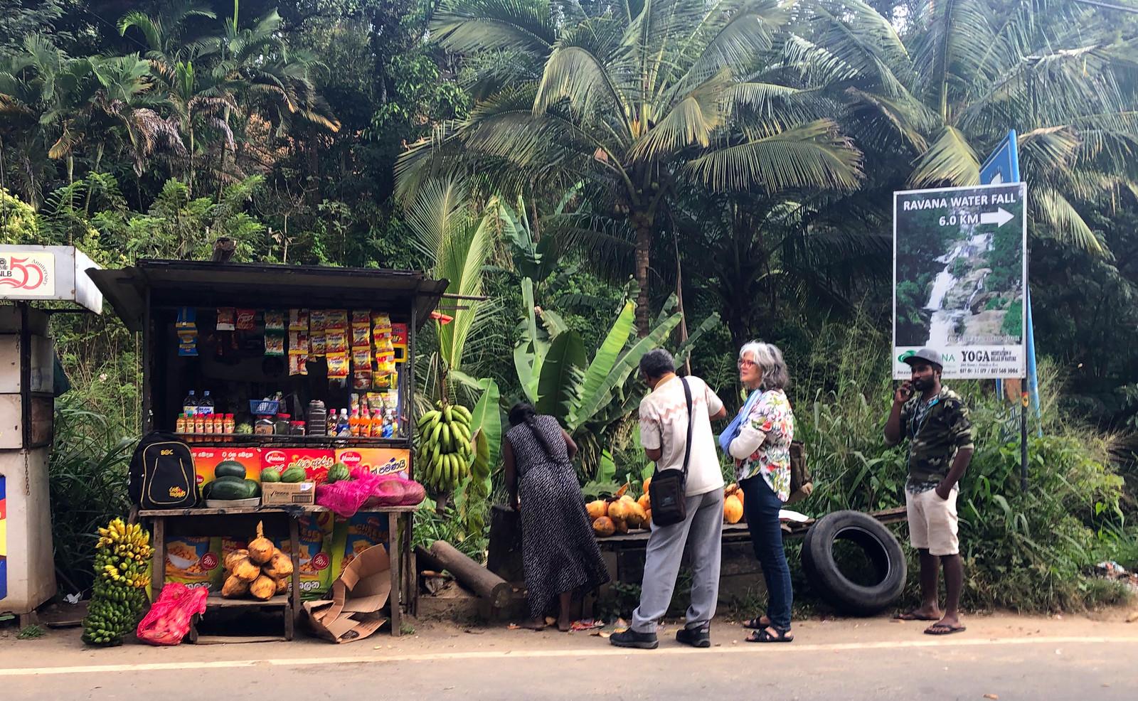 Tren de Ella, Ella Railway - Sri Lanka tren de ella - 31954656167 b49151cc35 h - Tren de Ella en Sri Lanka: ¿El viaje en tren más pintoresco del mundo?
