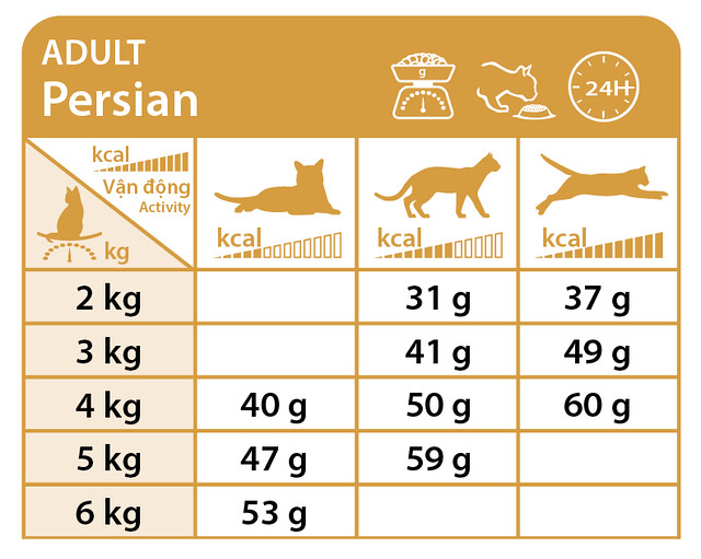 khau-phan-an-royal-canin-persian-adult