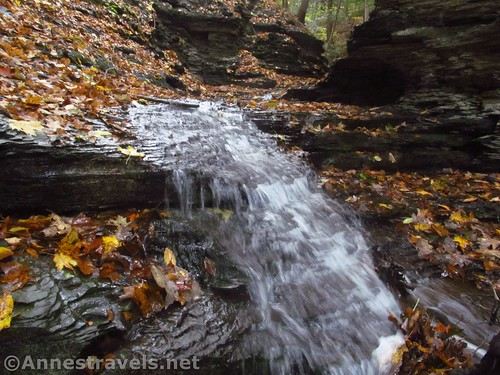 My favorite of the little waterfalls in the upper gorge of Barnes Gully, Onanda Park near Canandaigua, New York