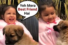 MS Dhoni Daughter Ziva Dhoni Playing With Puppy Video