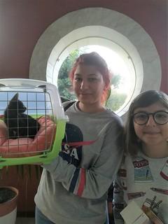 Un gattino adottato grazie a Volontari Polignano