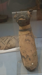 A cat mummy at the Egyptian Museum of Cairo