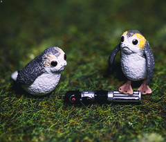 Porgs with Lightsaber