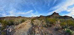 Homer Wilson Blue Creek Ranch
