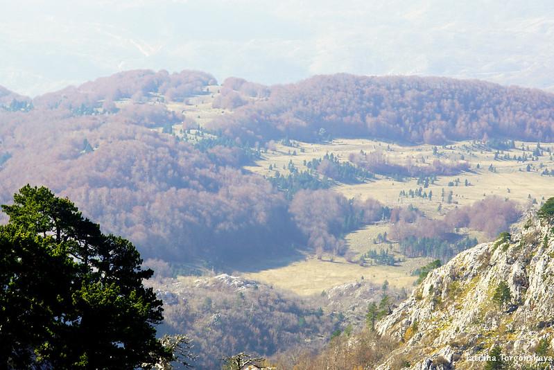Вид на долину с Боровой главы