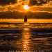 Spark Plug Seasmoke Sunrise by Adam Woodworth